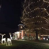 courthouse holiday lights